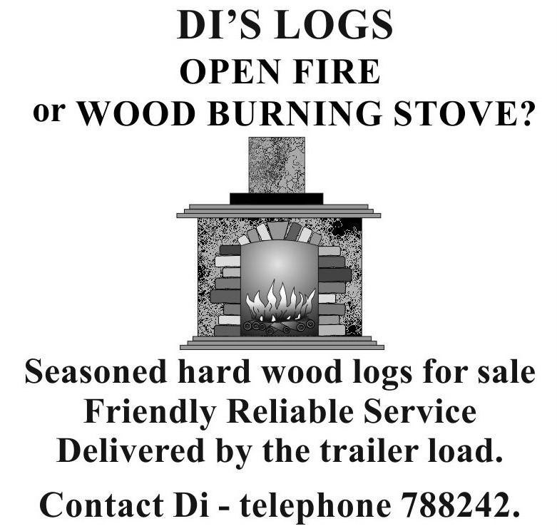 Di's logs